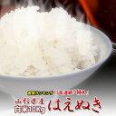 新米令和元年産 山形県産 はえぬき 10kg 本場山形の1等米食味ランキング22年連続特Aのこめ/コメ 送料無料
