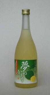 Yamagata honten-dream or Maria holic 720 ml (10000036)