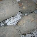 商品画像:カニのキタウロコの人気おせち2018楽天、掘りたて泥付き「岩国蓮根(岩国レンコン)」2kg