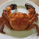 モクズガニ、極私的には「ゴリ蟹」と呼んでいる。ヒヨコマメが「ウンゲロマメ」なのと同じ