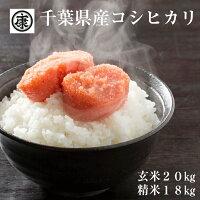 https://image.rakuten.co.jp/yamahan-foods/cabinet/1bn13.jpg
