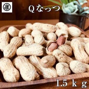 新豆!話題のQなっつ1.5kg 【超特価Qなっつ1.5kg】送料無料 【令和元年産千葉県産Qなっつ さや煎り落花生1.5kg(500g×3袋)】ピーナッツ ギフト 千葉みやげ yp yp