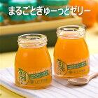 5種類の柑橘果汁を絶妙ブレンドしたゼリーまるごとぎゅーっとゼリー
