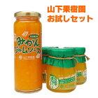 【送料無料】山下果樹園の人気商品のセット!お試しセット!