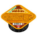 日清食品 チキンラーメン リフィル 5013
