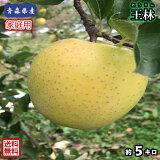 【送料無料】青森県産 王林 家庭用 5Kg(約5キロ)  晩生種りんご 食品 果物 フルーツ お取り寄せグルメ
