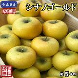 【送料無料】青森県産 シナノゴールド 家庭用 5Kg(約5キロ)  晩生種りんご 食品 果物 フルーツ お取り寄せグルメ