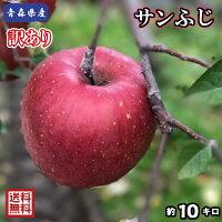 在庫残りわずか!【送料無料】青森県産 サンふじ 訳あり 10Kg(約10キロ)  晩生種りんご 食品 果物 フルーツ お取り寄せグルメ