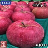 【常温便、送料無料】青森県産  有袋ふじ 訳あり 10Kg(約10キロ)  晩生種りんご 食品 果物 フルーツ お取り寄せグルメ