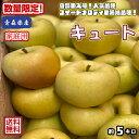 奇跡の入荷!【クール便送料無料】数量限定!超希少!!青森県産 キュート 家庭用 5kg(約5キロ) 早生種りんご 食品 果物 フルーツ お取り寄せグルメ