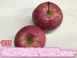 残りわずか!!【送料無料】青森県産 サンふじ 訳あり 5Kg(約5キロ)  晩生種りんご 食品 果物 フルーツ お取り寄せグルメ