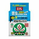 【楽天最安値挑戦中!】住友化学園芸 オルトランDX粒剤 1kg