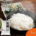 福井精米 新米 令和2年産 国内産 故郷こしひかり精米 コシヒカリ お米 おコメ 白米 5kg