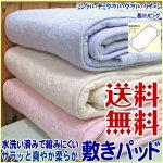 【送料無料】丸洗いOK。さらっと爽やか・水洗いできる柔らか敷きパッドシングルサイズ