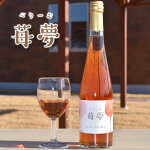 いちごワイン苺夢べりーむ500ml
