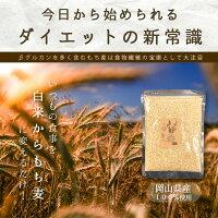 もち麦安い訳ありおすすめお試しポイント消化ぽっきり岡山県産100%もち麦300g国産送料無料ダイエット健康美容