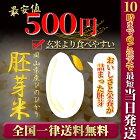 ポイント消化お試し新米お米安い29年度岡山県産ヒノヒカリ胚芽米600グラム送料無料ひのひかり一等米メール便関西のコシヒカリ
