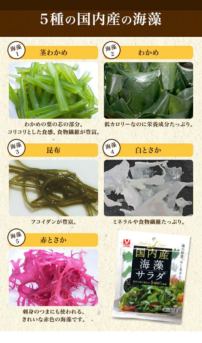 【国内の海で採れた5種類の海藻】国内産海藻サラ...の紹介画像3
