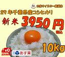 29年千葉県産コシヒカリ 白米 10kg【送料無料※一部地域を除く】