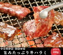 「やまなか家」伝統の味旨みたっぷり牛ハラミ【熟成醤油だれ】【焼肉 牛肉 ハラミ 牛 はらみ 焼き肉 つまみ ご飯のお供 おかず】