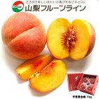 山梨フルーツライン桃1kg