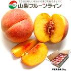 山梨フルーツライン桃5kg