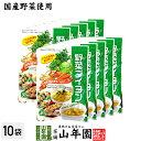 【国産野菜使用】野菜ブイヨン 4g×30パック×10袋セット...