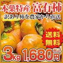 《本巣特産(旧本巣郡) 富有柿》訳あり3.0kg♪ 送料無料大きさ(3L〜M)柿の名産地 岐阜県の中でも極上の美味さを誇る地区から直送します![ ご自宅用、お土産に。お歳暮や、贈り物には、ご進物用を ]◆収穫・選定始まりました!◆10P13Nov14 - 美味しい果物屋 ヤマニフルーツ