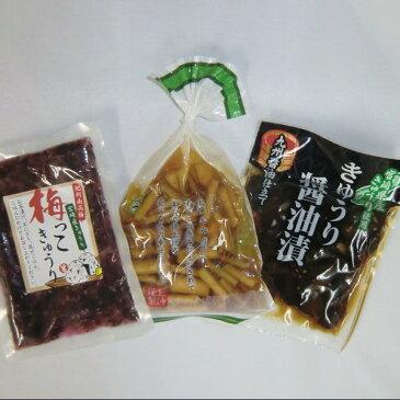 宮崎の漬物3種   きゅうりの醤油漬け  ゴボウの醤油漬け   梅っこきゅうり1袋づつ【千円ポッキリ】【送料無料】