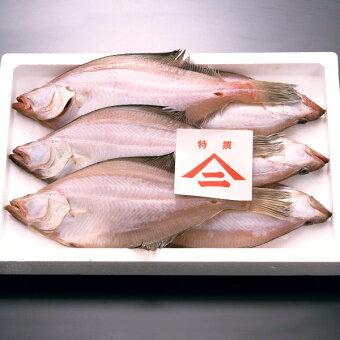 香住産カレイ天日干し5〜9匹(750g)