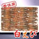 [冷凍][白エビ700g入で44匹前後]白えび の刺身は口の中でトロけるうまさ!香住の 白えび (しろえび)(中サイズ)