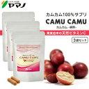 【公式】カムカム-junsui-(純粋) 60カプセル入り×3袋 カムカムパウダー 天然ビタミンC サプリ ビタミンc サプリメント