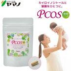 【公式】カイロイノシトー配合サプリ PCOS葉酸プラス 約1ヶ月分