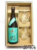 【日本酒】大那(だいな)純米吟醸 那須産五百万石 720ml & SAKEグラス(黒龍)2個 箱入りセット【春 お花見】