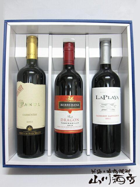 【濃厚赤ワイン 750ml×3本ギフトセット】パヌール・カルメネール + ラプラヤ カベルネ・ソーヴィニヨン + テンプラリーニョ ドラゴン