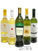 厳選イタリア白ワインセット ( 750ml×5本 ) 【 4853 】【 イタリア白ワイン 】【 送料無料 】【 父の日 お中元 贈り物 ギフト プレゼント 】