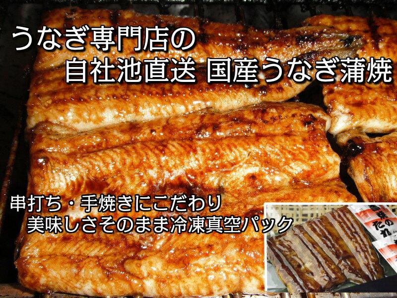 国産真空蒲焼10尾セット