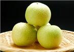 二十世紀梨 20世紀梨中玉1個