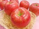 シナノスイートりんご小玉1個あす楽