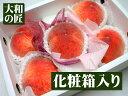 日本人はやっぱり桃が好き♪この時期に美味しい桃が食べられる【5月上旬以降予定★】山梨県産 ハウス栽培 桃[大玉5個入り化粧箱]【spr10P05Apr13】