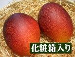 宮崎県産完熟アップルマンゴー[中玉2個入り箱]