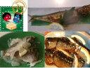 送料無料!節分にイワシを食べて健康生活!今や高級魚、マイワシ製品だけを8種10品詰め合わせ!...