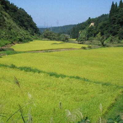 北海道風景