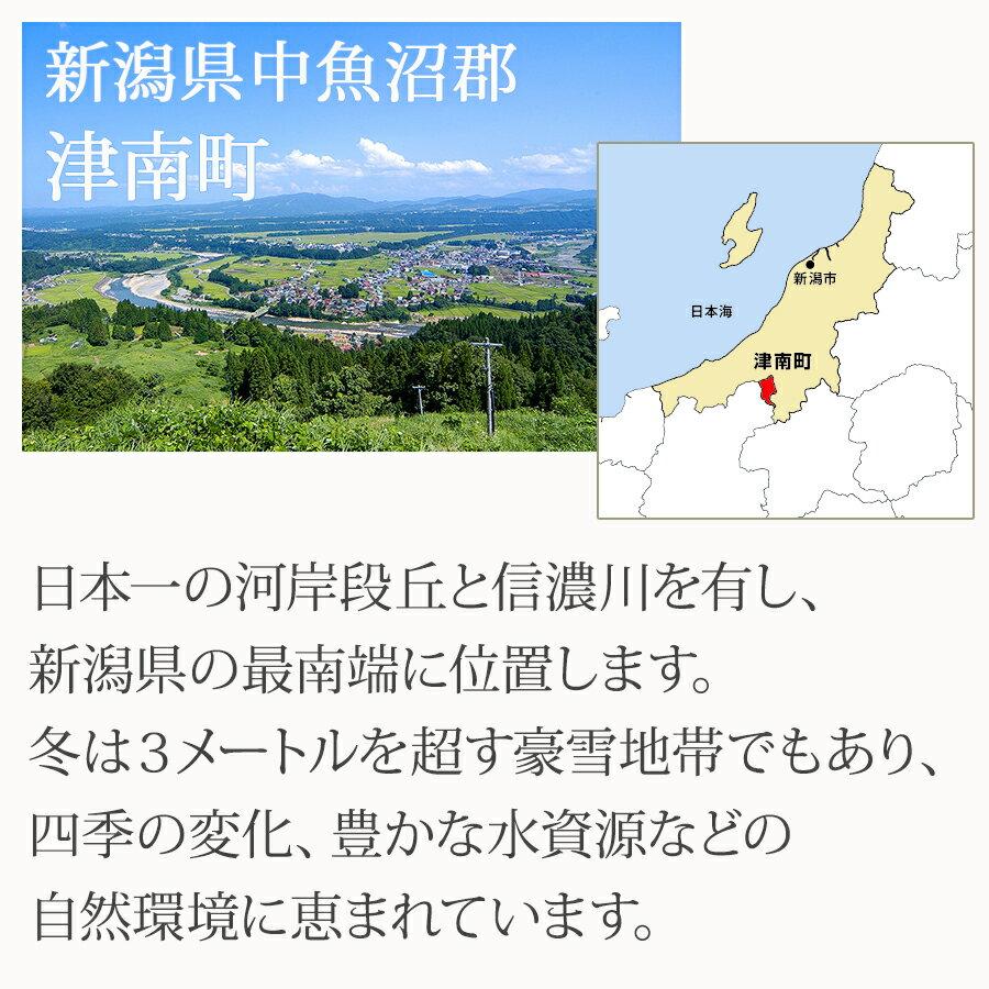 雪下にんじんジュース(200ml×12本)津南町産地直送木曜発送