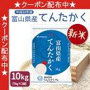 新米 富山県産 てんたかく 送料無料 米 白米 10kg(5...