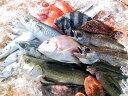 朝獲れだから、活〆だから鮮度の良さが自慢です。朝獲れ鮮魚 5000円セット