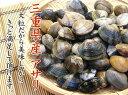 日本の流通しているアサリのほとんどは輸入物だと知っていますか?あなたの食べているアサリは本当に安心ですか?純国産!安心の三重県産アサリ