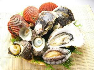 【送料無料】アワビも旬の牡蠣もセットに!今度の休日は焼き貝でバーベキューを!お試しバーベ...