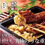 やまや 鹿児島県産 鰻重2食セット(九州 お取り寄せ グルメ おつまみ ご飯のお供 手土産 ギフト)