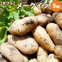 【GIFT】 じゃがいも メークイン L/2L混 5kg 北海道 じゃがいも ジャガイモ 送料無料 メークイン ギフト...